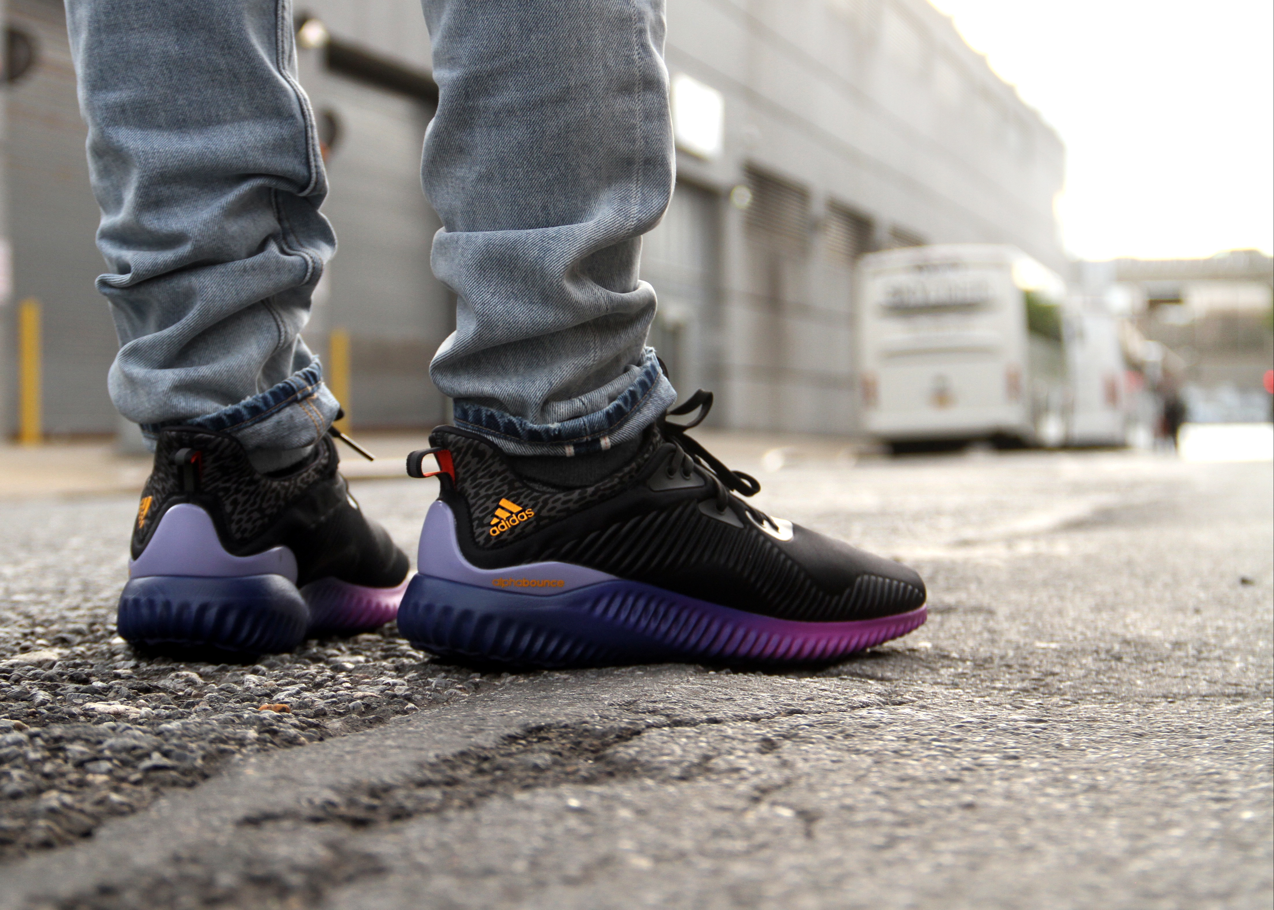 adidas alphabounce style sole collector