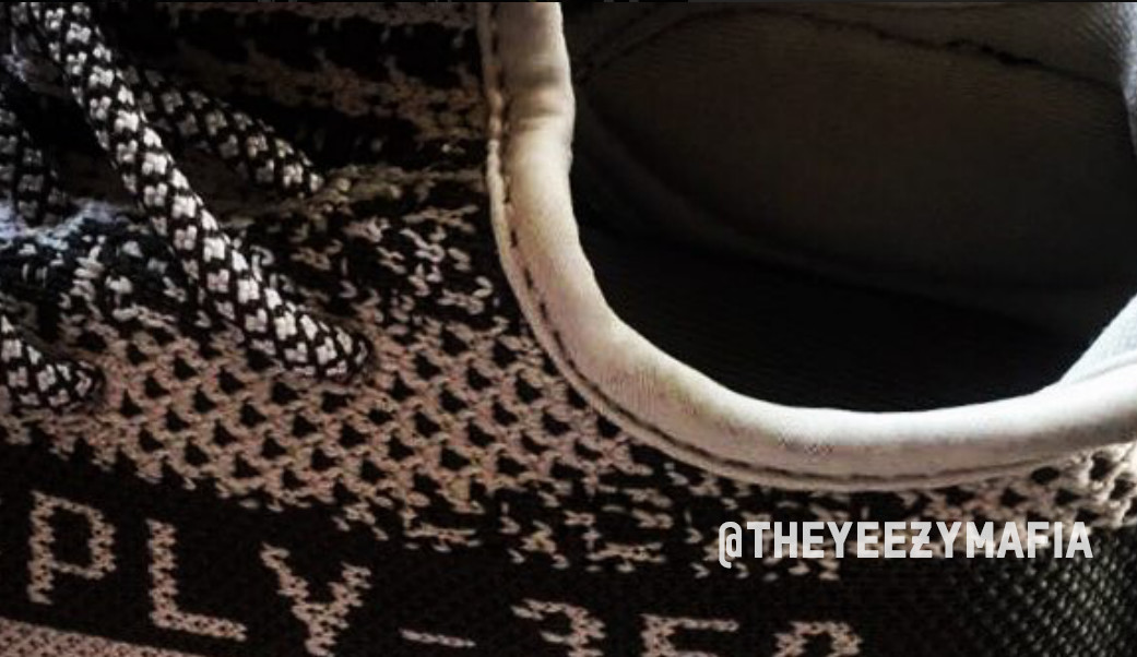 Adidas Yeezy 350 Boost V2 Turtle Dove Collar
