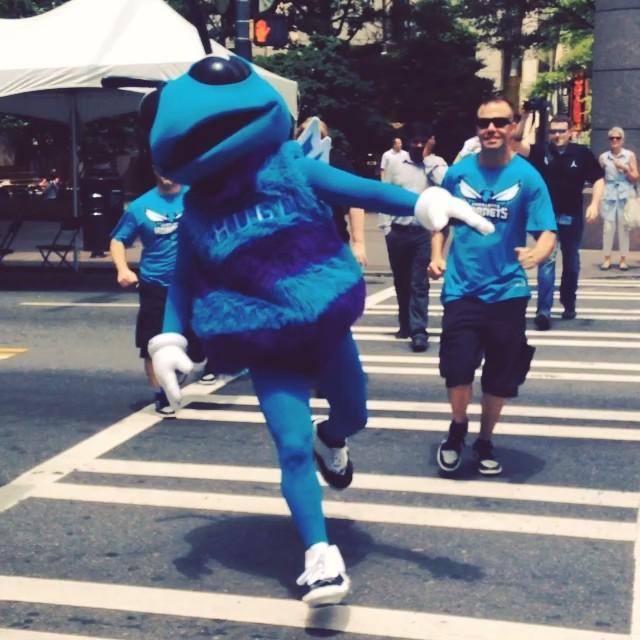 Hugo the Hornet wears Concord Air Jordan XI 11 (2)