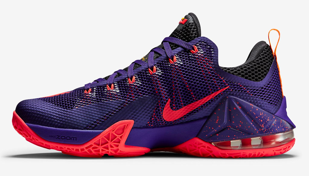 Nike LeBron 12 Low Court Purple 724557-565 (2)