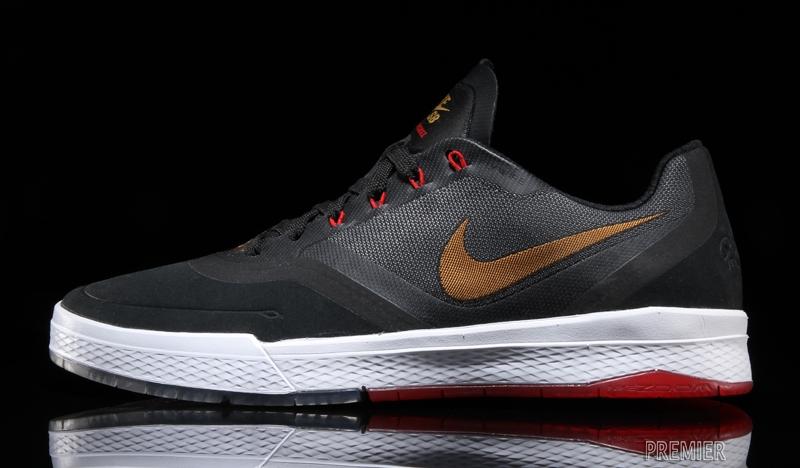 Nike SB Signature Model