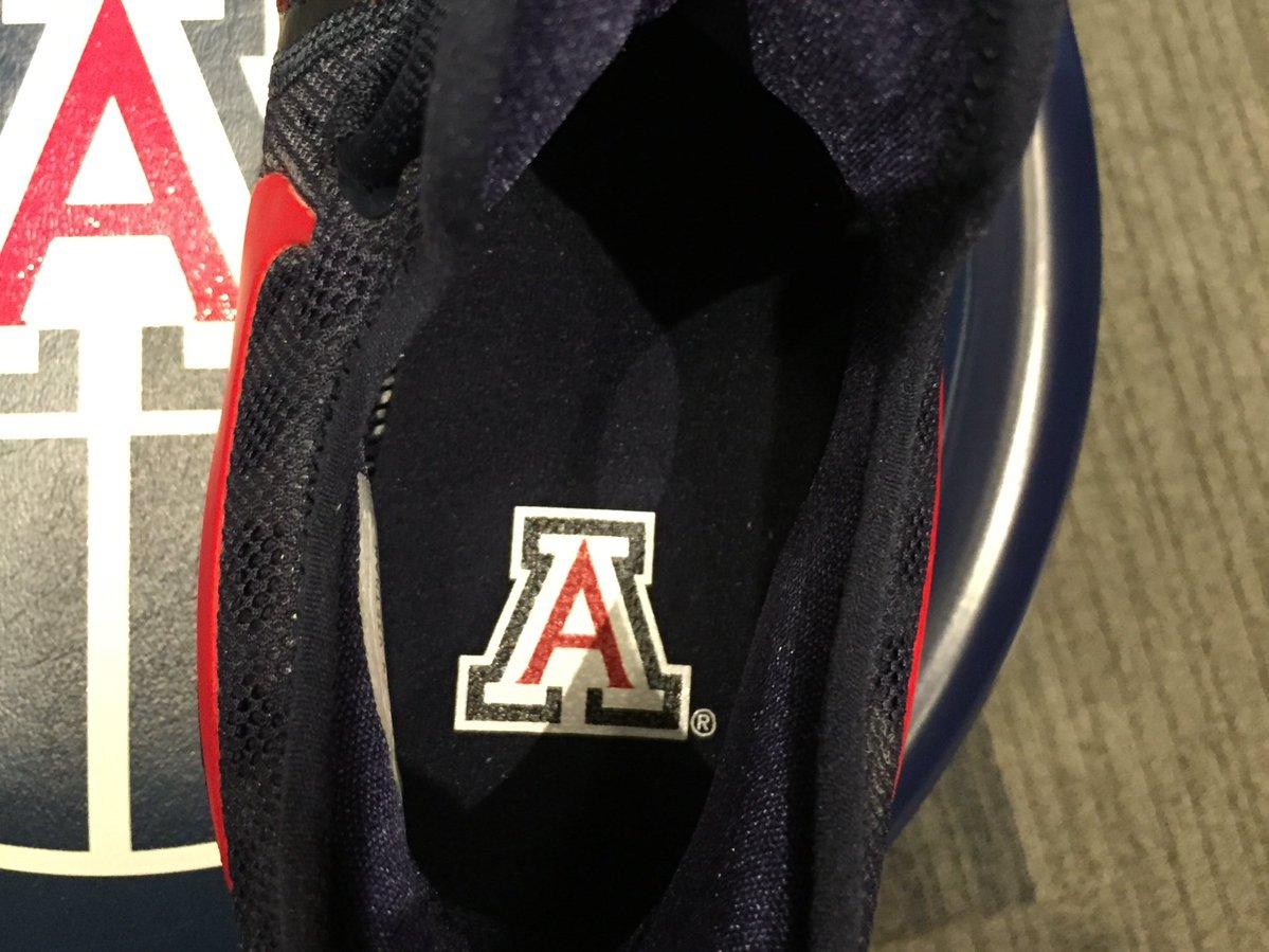 Arizona Nike KD 9 Insole