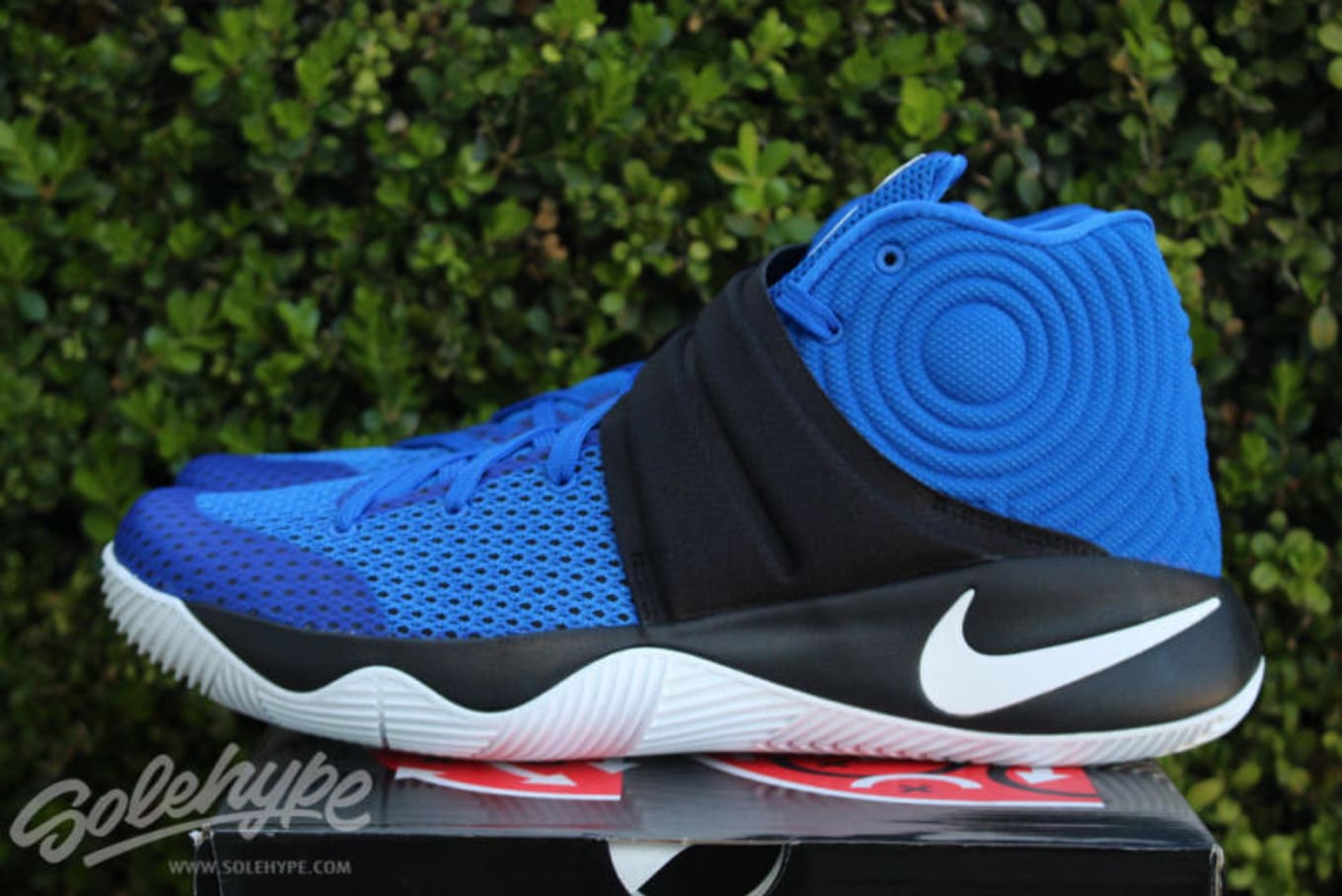 6f9756a66496 Nike Kyrie 2 Brotherhood Duke 819583-444