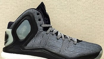 adidas D Rose 5 Boost Black/White-Glow