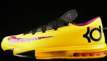 Nike KD 6 Peanut Butter & Jelly
