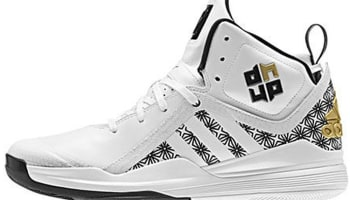 adidas D Howard 5 White/Black-Gold