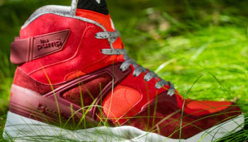 Reebok The Pump Certified Collegiate Burgundy/Scarlet