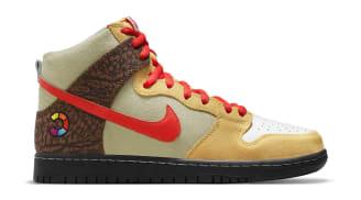 Color Skates x Nike SB Dunk High