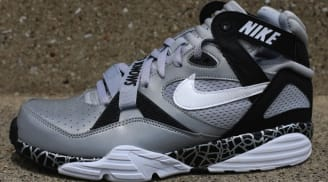 Nike Air Trainer Max 91 | Nike | Sole Collector