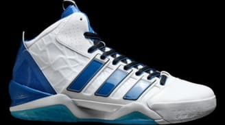 new arrival bffd6 f0060 adidas adiPower Howard 2 Home