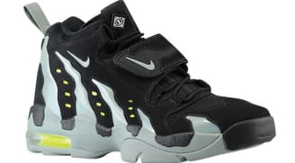 24281d3a803 Nike Air DT Max 96 | Nike | Sole Collector