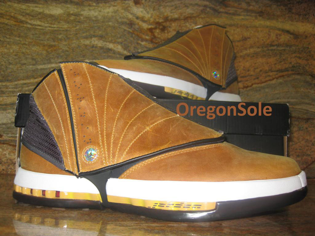 Air Jordan XVI 16 Ginger Sample