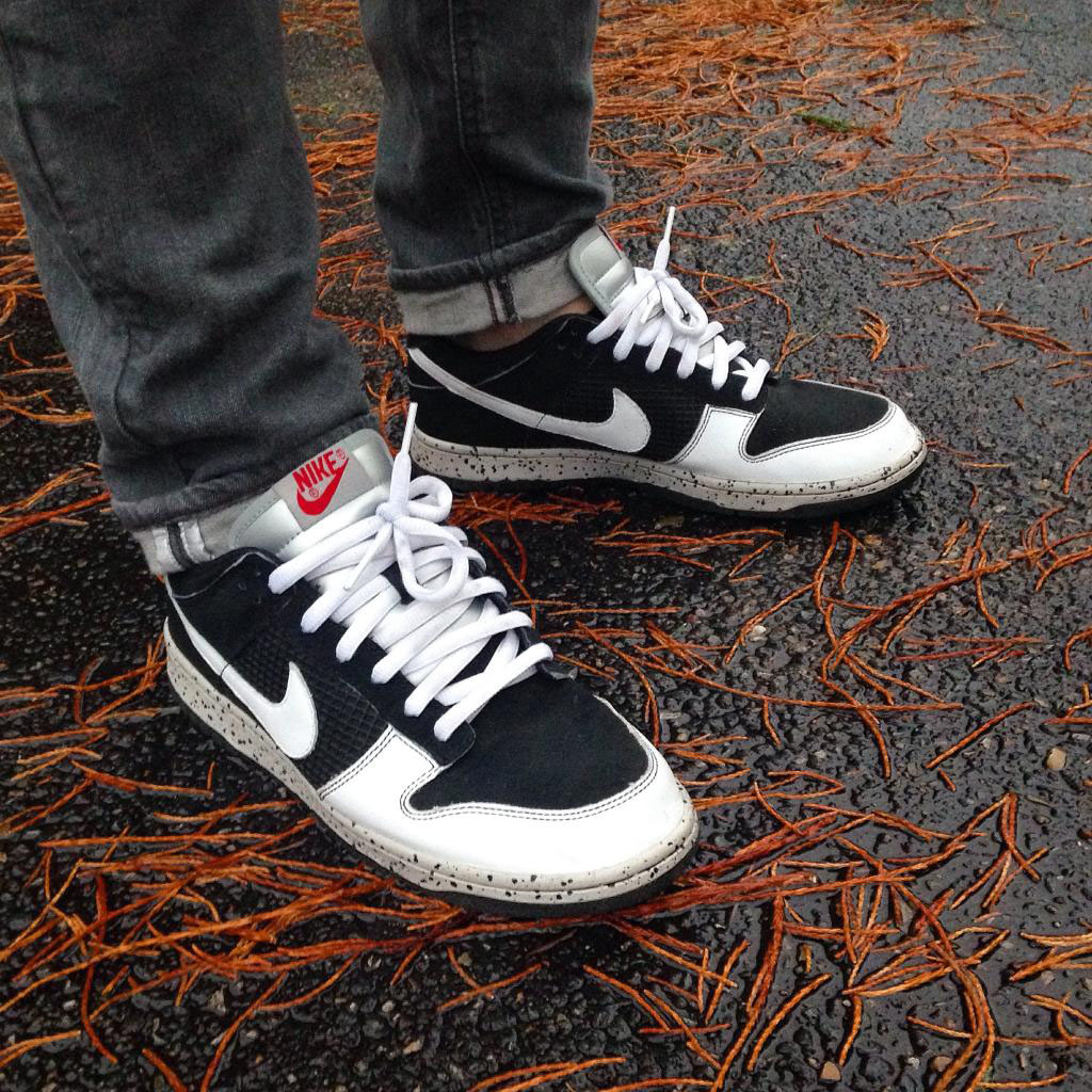 nike dunk cl
