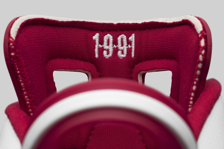 Alternate Air Jordan 6 384664-113 Tongue