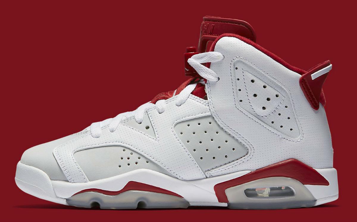 Air Jordan 6 Alternate Release Date Profile 384664-113