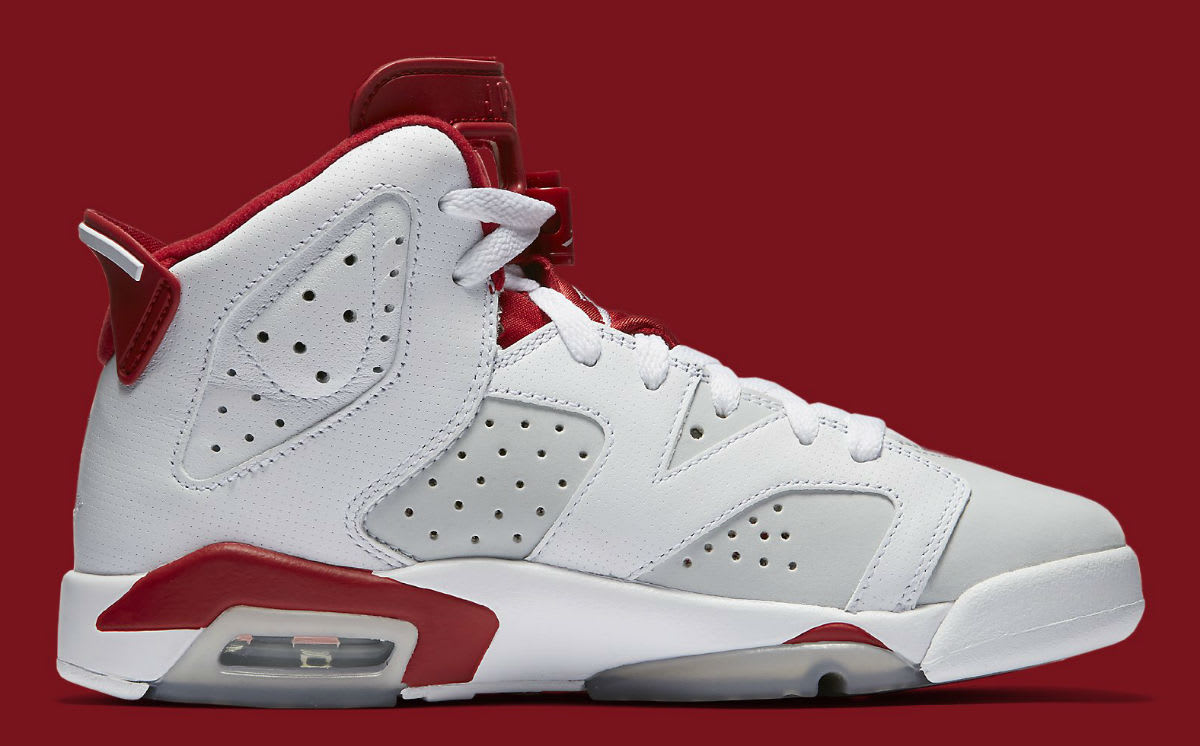 Air Jordan 6 Alternate Release Date Medial 384664-113
