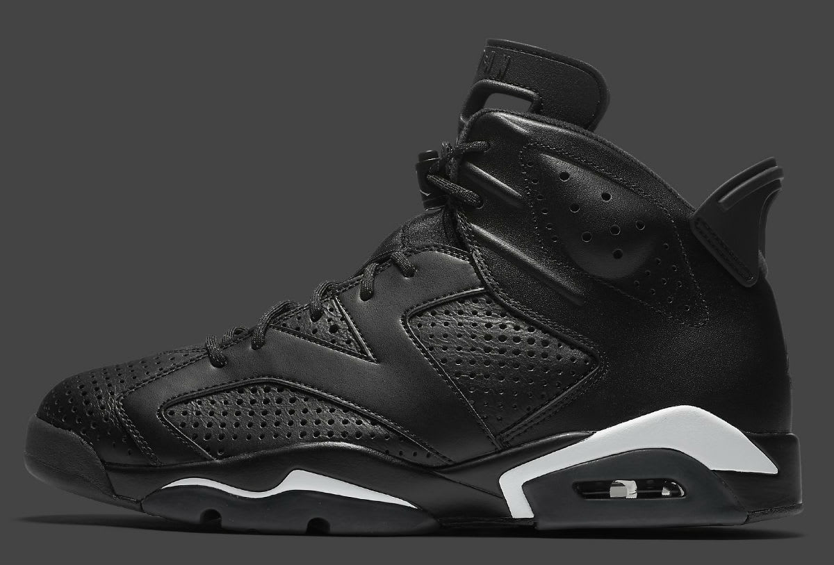 Air Jordan 6 Black Cat Release Date Profile 384664-020
