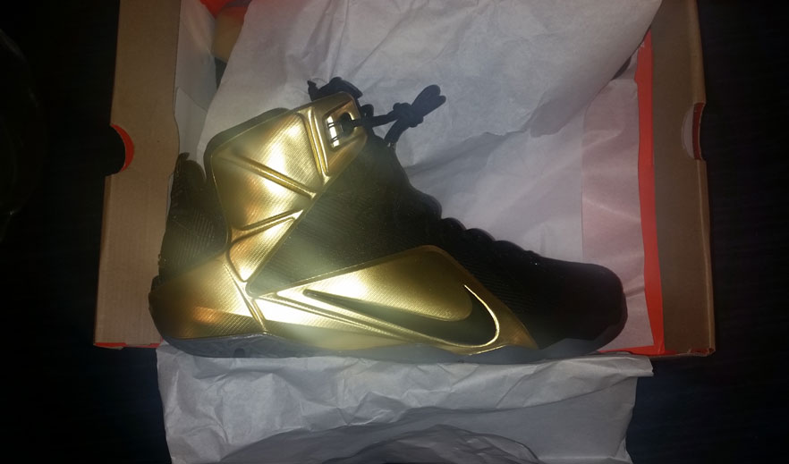 all kd 6s lebron james shoes black and gold