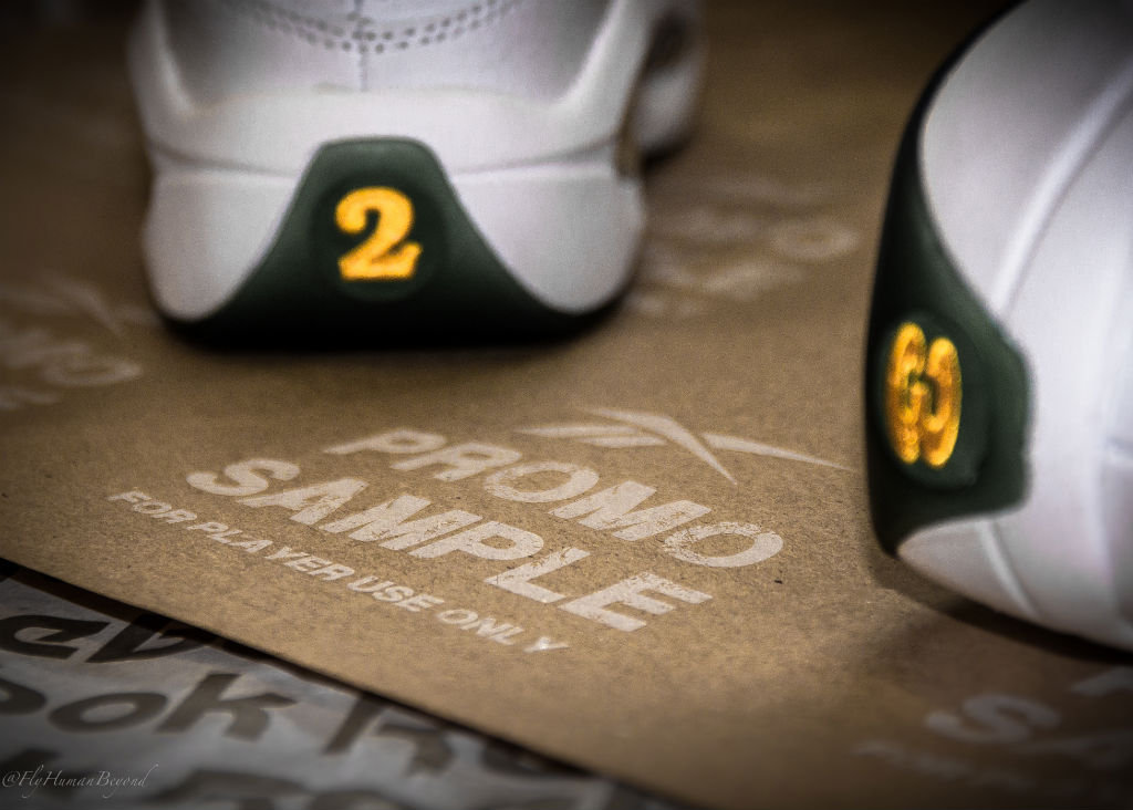 Packer Shoes x Reebok Question LeBron James For Player Use Only (6)