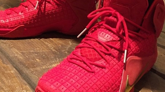 2015 Nike LeBron 12 Red Rubber City