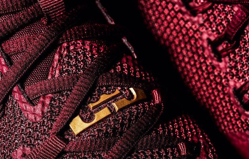 Nike LeBron Ambassador 9 Tongue