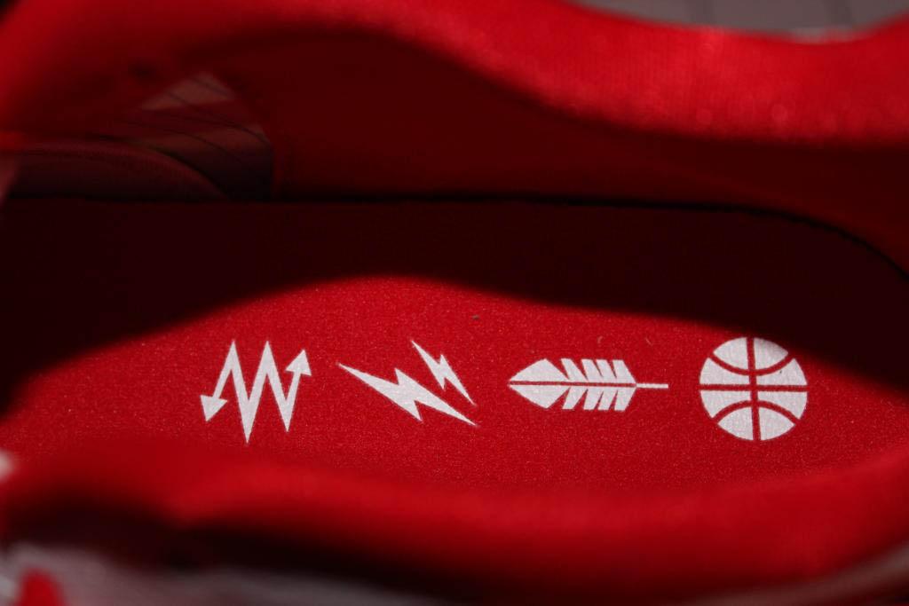 89b51656029 Nike Zoom Hyperdunk 2011 Low USA Sample 487638-456 (8)