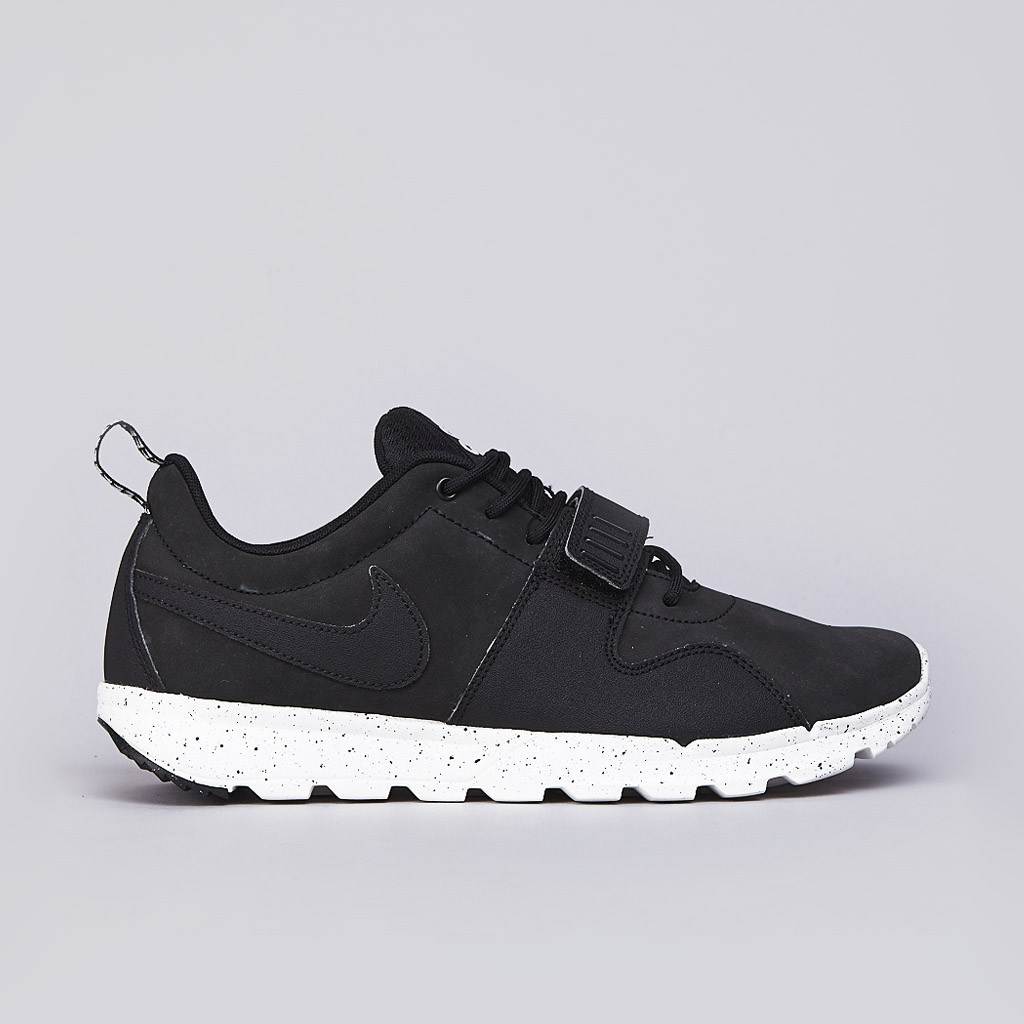 Nike ACG Trainerendor Low profile