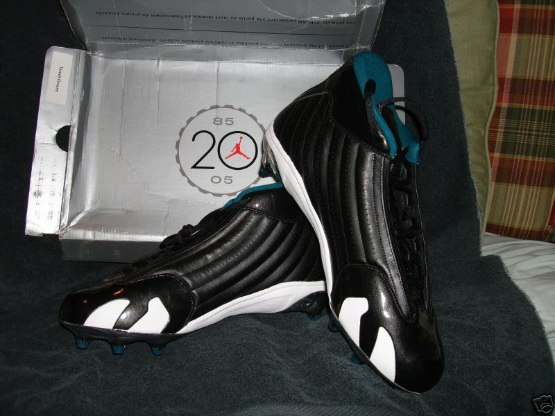 Terrell Owens' Air Jordan 14 XIV PE Cleats