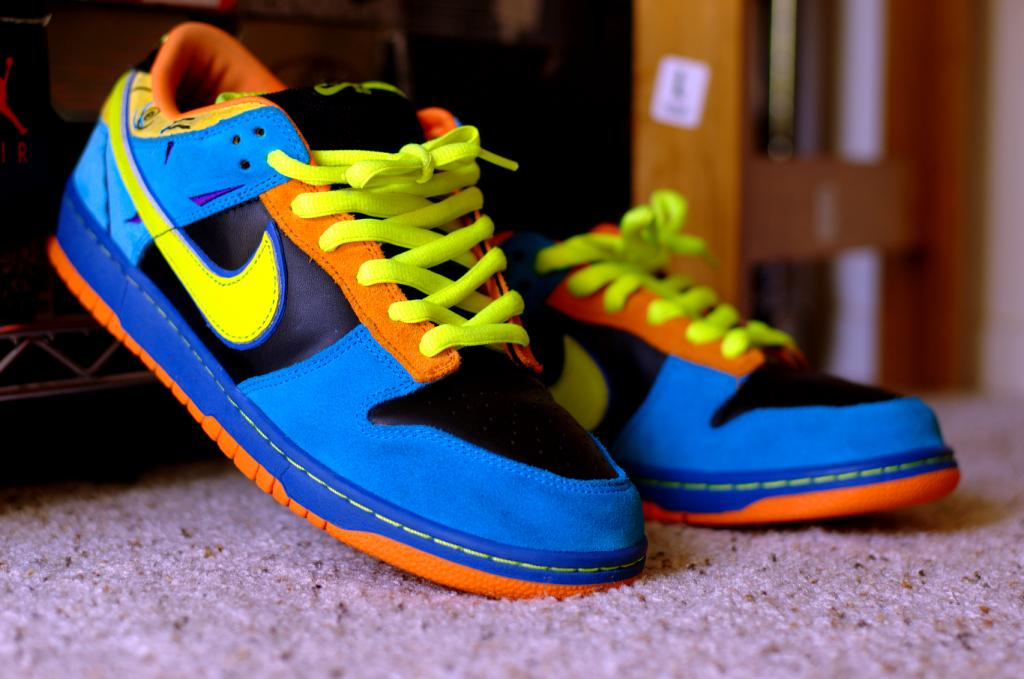 nike sb dunk skate or die 10