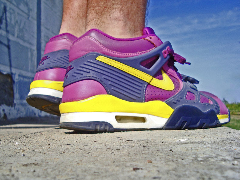 sale retailer 4d548 6ee6a BND777 in the Viotech Nike Air Trainer III