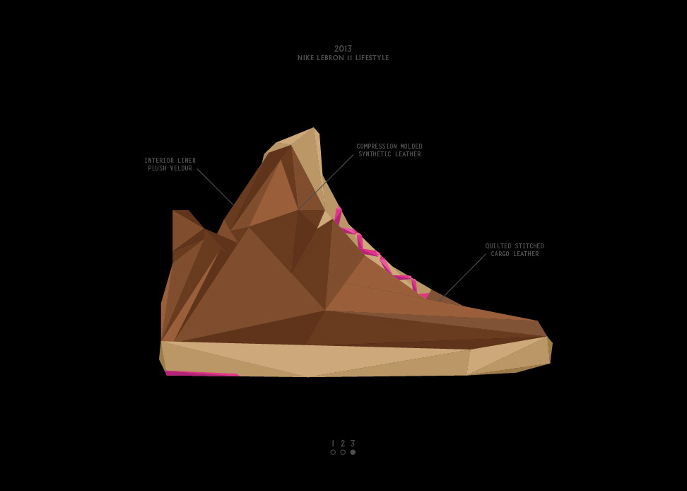 Nike LeBron 11 NSW Lifestyle Work Hard Play Hard graphic