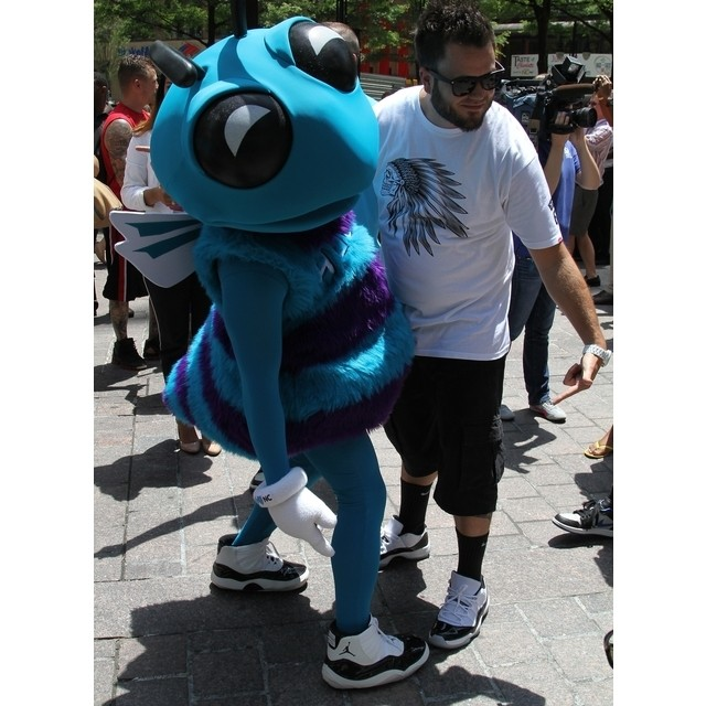 Hugo the Hornet wears Concord Air Jordan XI 11 (1)