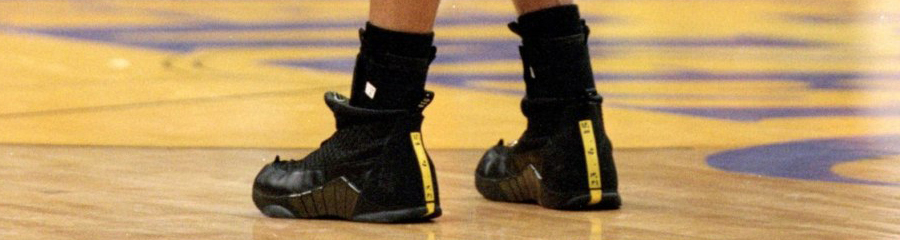 the best attitude 27db5 90446 XX8 Days Of Flight    Reggie Miller s Air Jordan XV PE