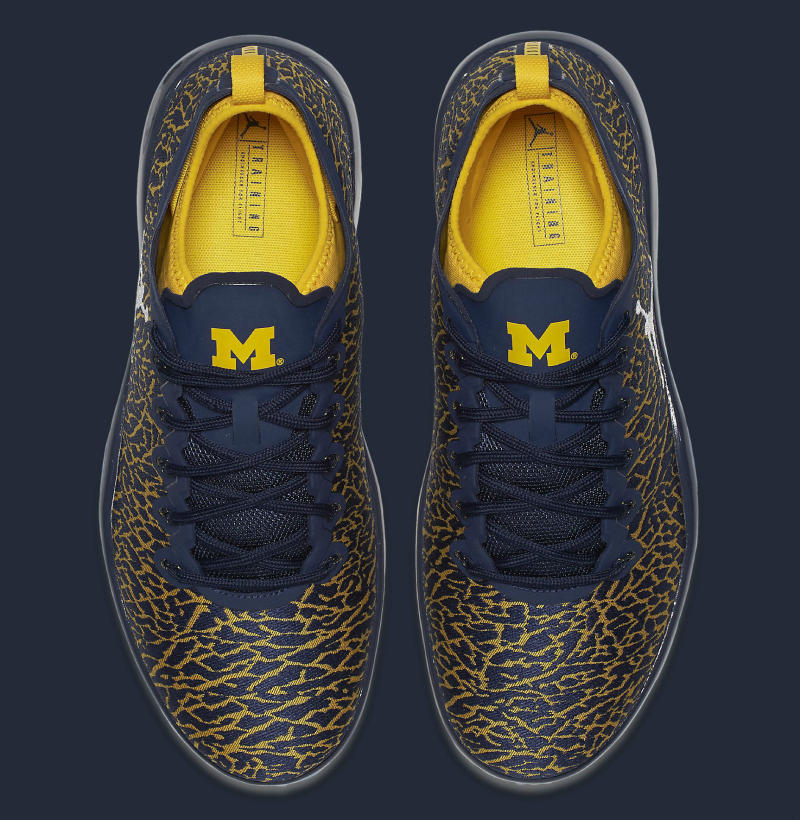 Michigan Air Jordan Trainer 1 Low (8)