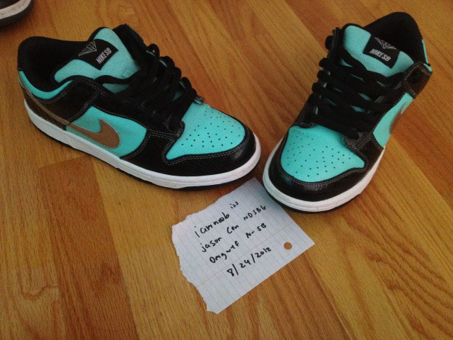 Pickups of the Week // Nike SB Dunk Low Tiffany by iamnoob