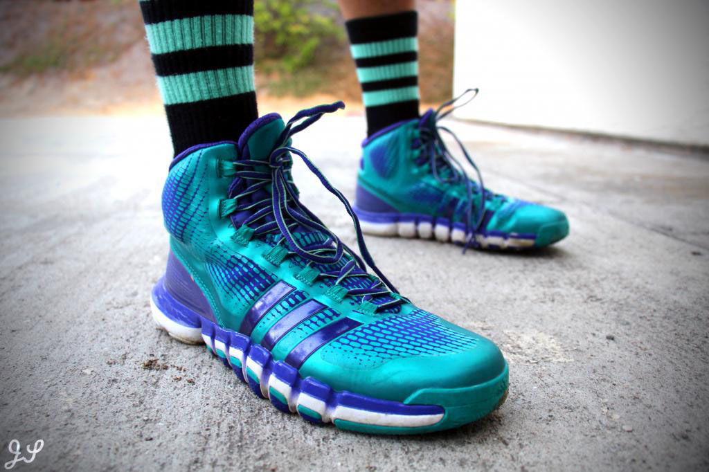 gdiemaster in the Teal/Purple adidas Crazyquick