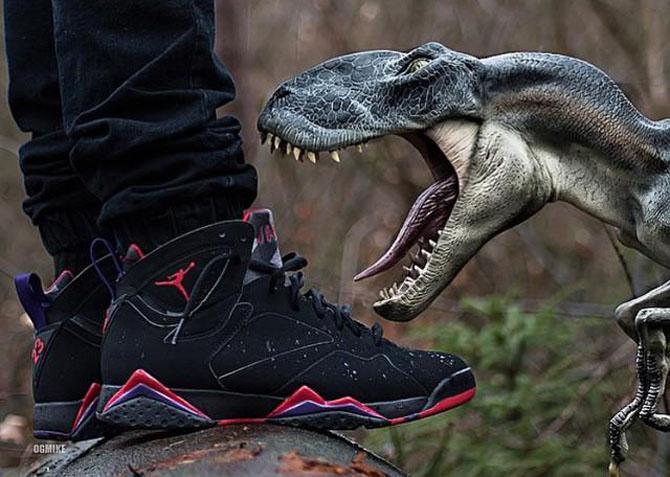 Sneaker Photos