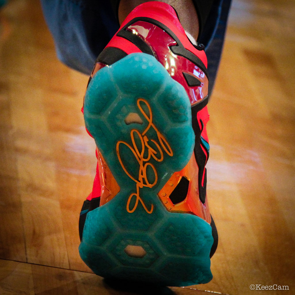 Swin Cash wearing Nike LeBron XI 11 Elite Hero (4)