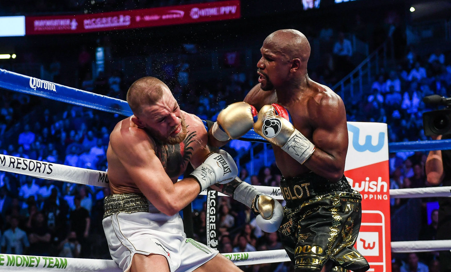 juego James Dyson Pensionista  Floyd Mayweather Knocks Out Conor McGregor in Custom Adidas Boots | Sole  Collector