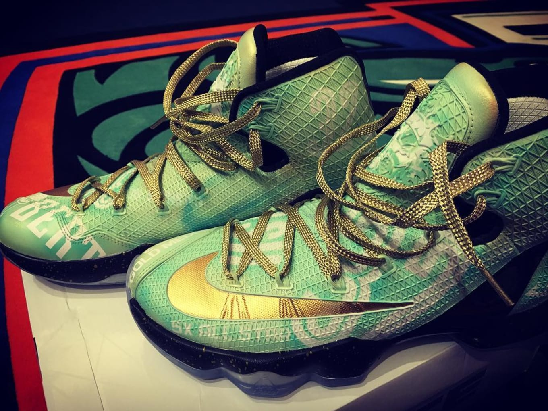 1ac1dbc4067 Swin Cash Nike LeBron 13 Elite Retirement Custom | Sole Collector