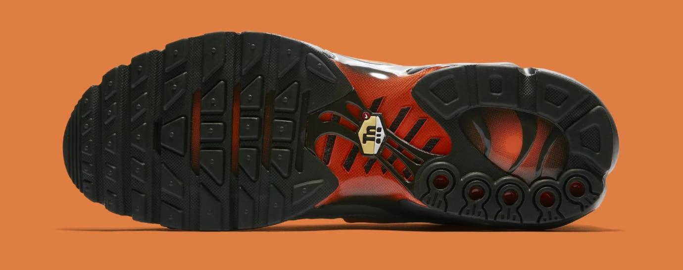 Nike Air Max Plus 'Dark Stucco/Total Orange' AJ2013-003 (Bottom)