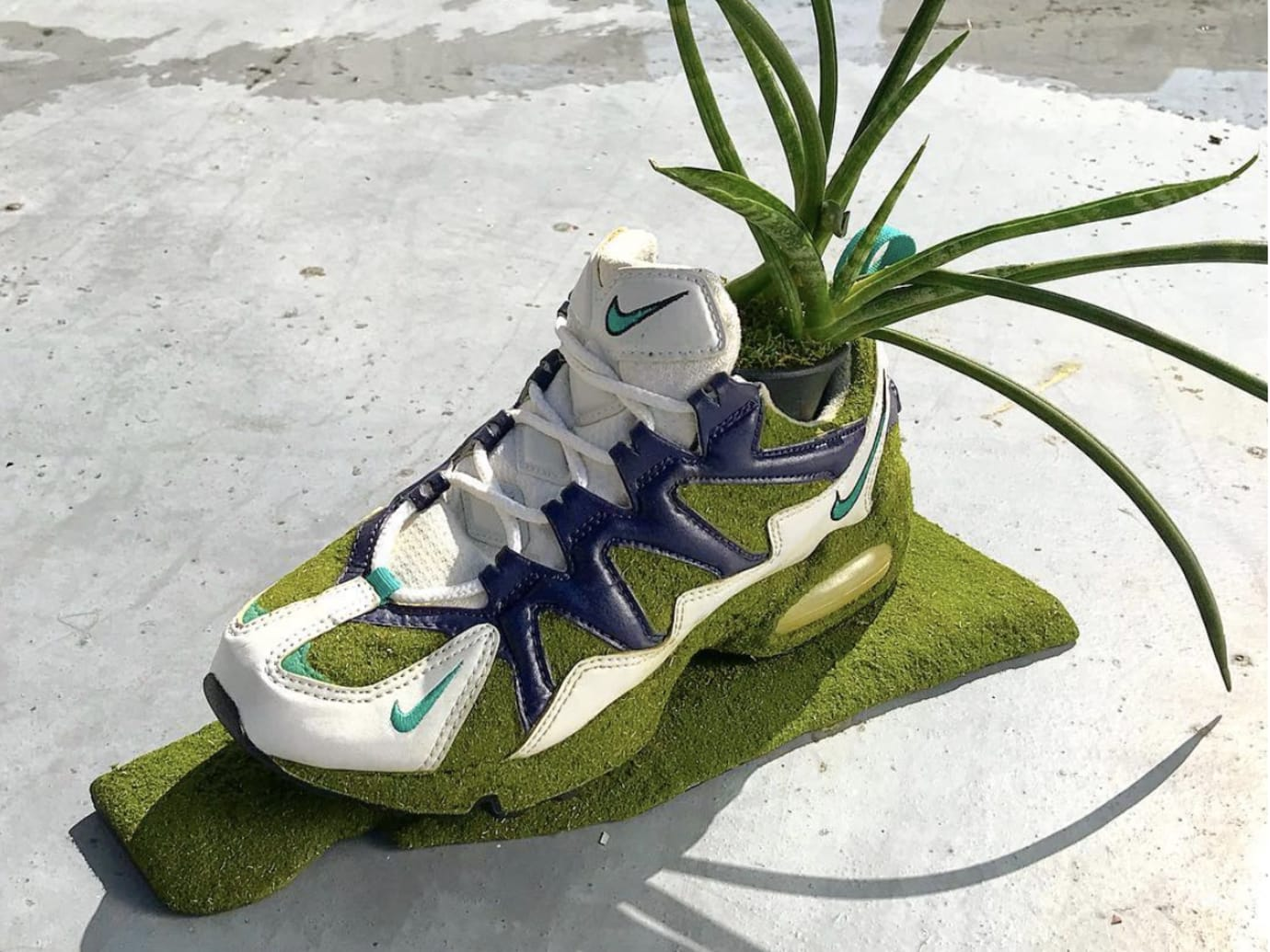 58e960fb85ae This Artist Keeps Vintage Nikes Alive by Turning Them Into Plants ...