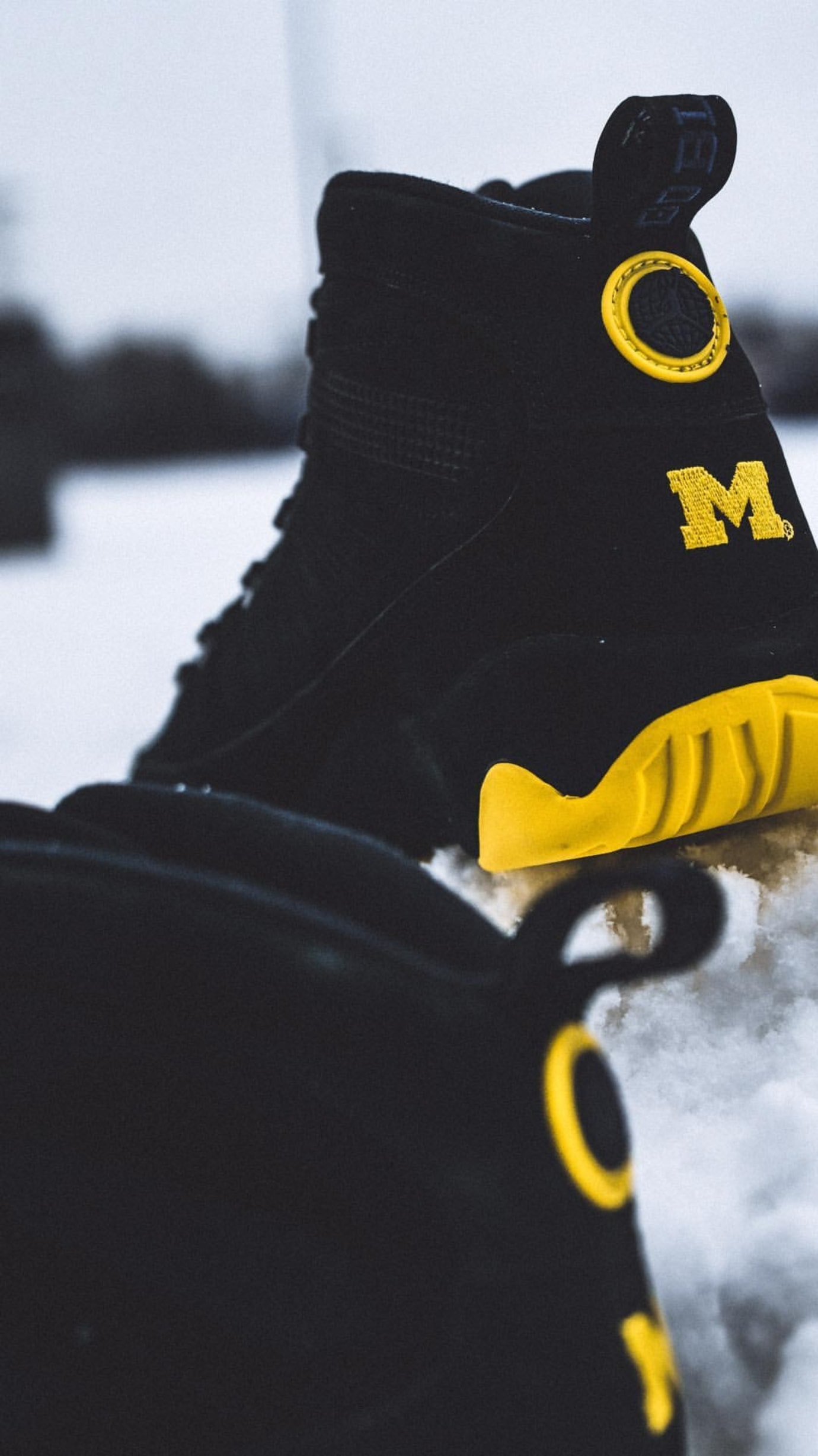 Michigan Air Jordan 9 Boot Heel