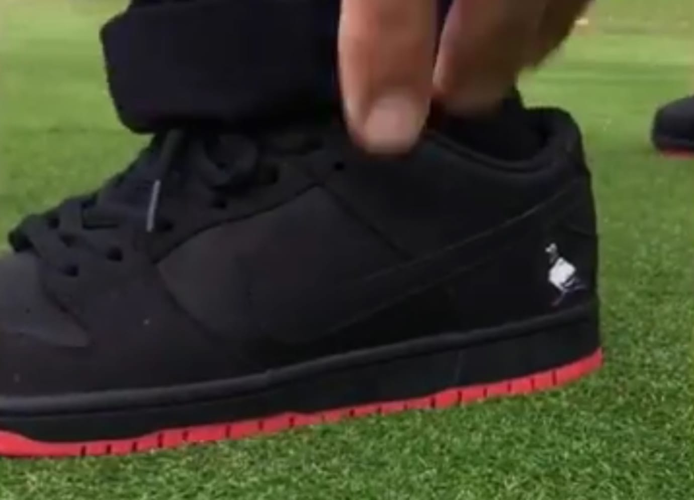 Black Pigeon Nike SB Dunk Low Heel