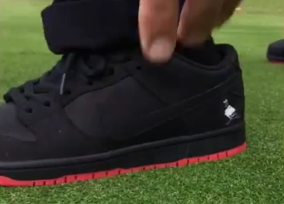 Black Pigeon Nike Sb Dunk Low Heel