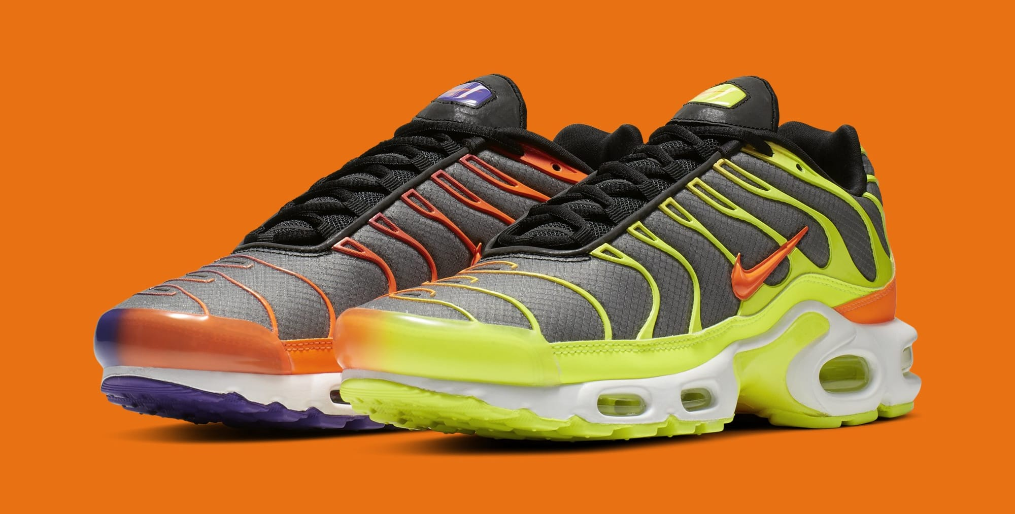Nike Air Max Plus 'Color Flip/Black' CI5924-061 (Pair)