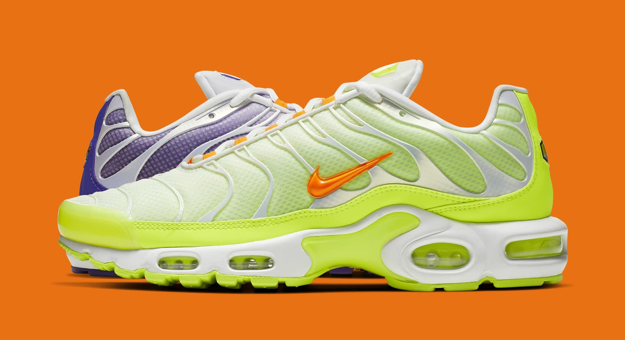 Nike Air Max Plus 'Color Flip/White' CI5925-531 (Lateral)