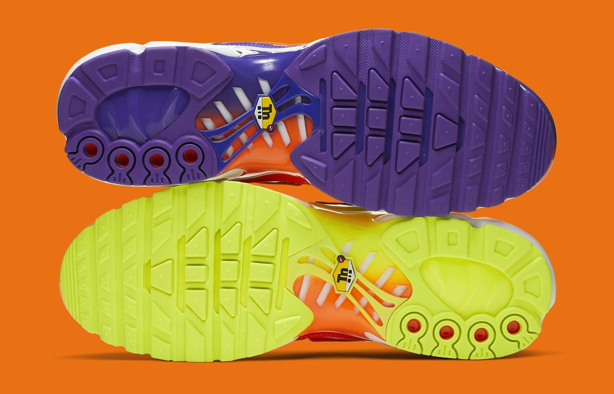 Nike Air Max Plus 'Color Flip/Black' CI5924-061 (Bottom)