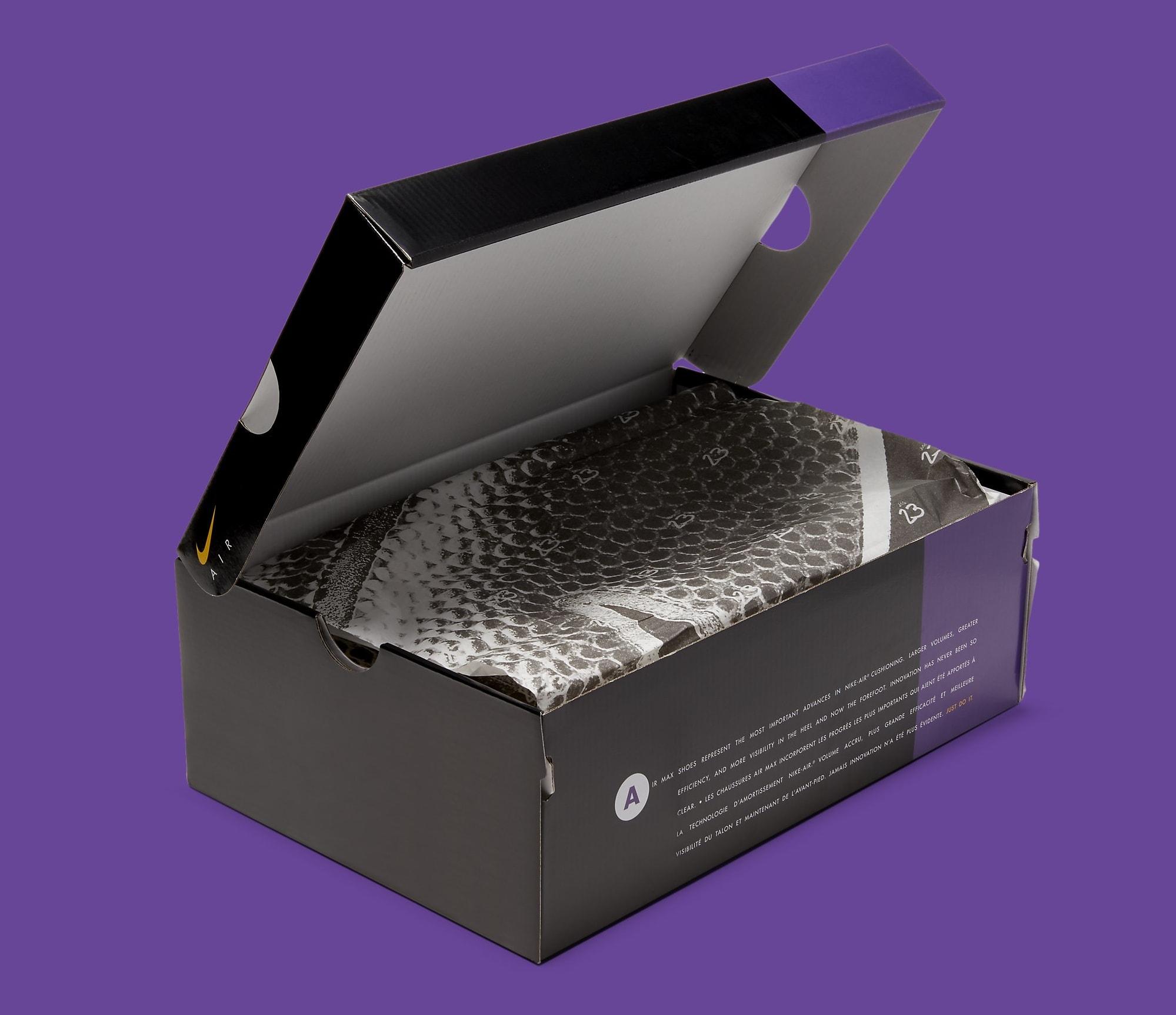 Nike Air Max 95 'LeBron' CZ3624-001 Box