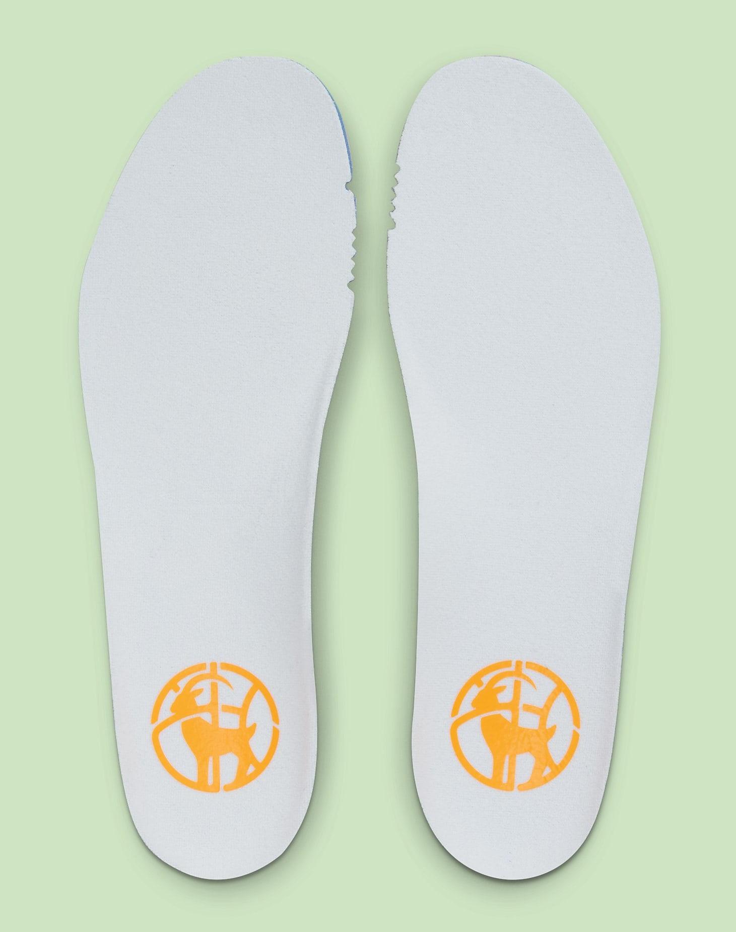 Diana Taurasi x Nike LeBron 18 PE CQ9283-401 Insole